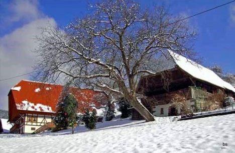 1493 Baschelehof 19090b