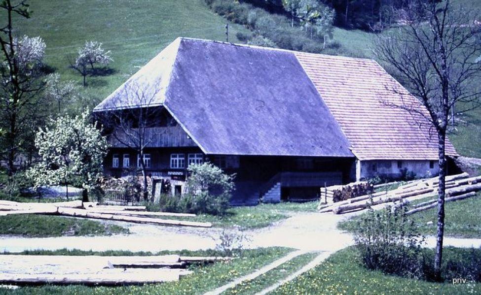 1493 Rauberhof1753 Pict0006