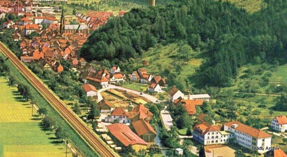 1865 B06 Panorama Saegewerkstreit 001