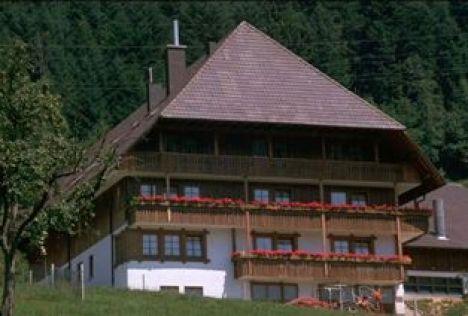 1493 Wintermaxenhof Hof14 Wintermaxenhof